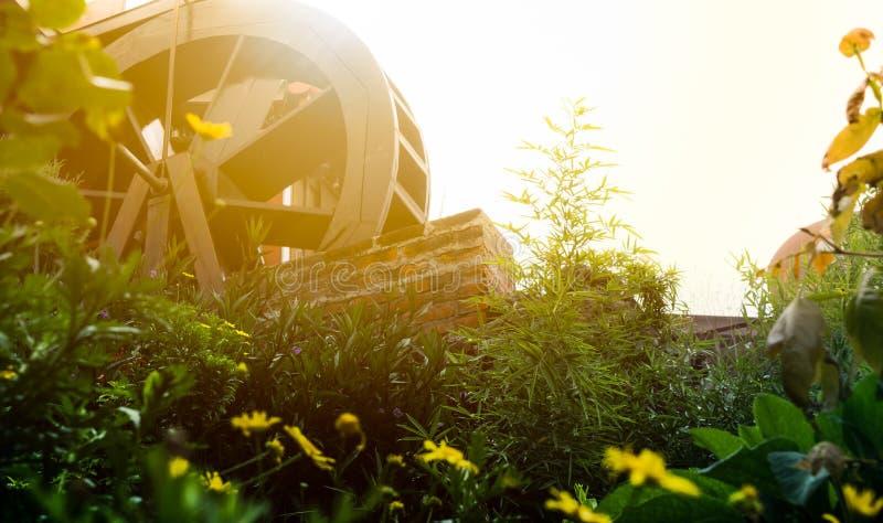 Υδρόμυλος και ένας τομέας των λουλουδιών στοκ φωτογραφίες