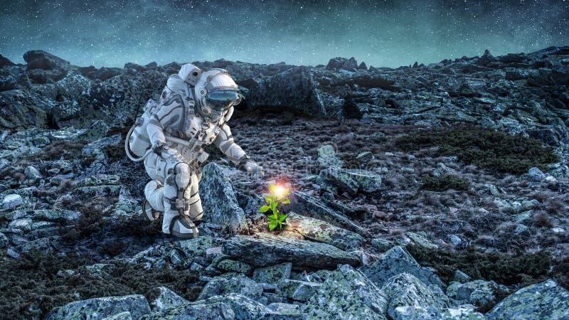 Υπάρχει ζωή στο φεγγάρι Μικτά μέσα στοκ εικόνα με δικαίωμα ελεύθερης χρήσης