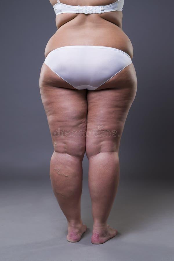 Υπέρβαρη γυναίκα με τα παχιούς πόδια και τους γλουτούς, θηλυκό σώμα παχυσαρκίας στοκ εικόνα