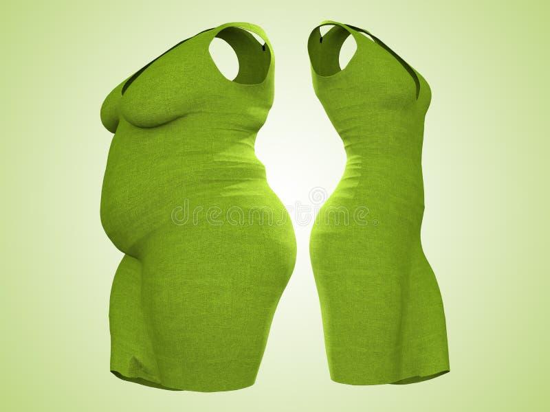 Υπέρβαρη παχύσαρκη θηλυκή εξάρτηση φορεμάτων εναντίον του λεπτού κατάλληλου υγιούς σώματος ελεύθερη απεικόνιση δικαιώματος