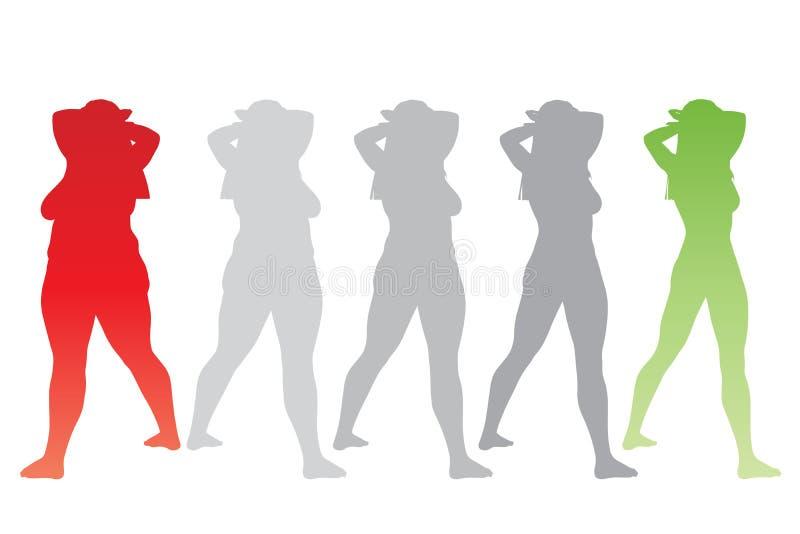 Υπέρβαρο παχύσαρκο θηλυκό εναντίον του λεπτού κατάλληλου υγιούς σώματος απεικόνιση αποθεμάτων