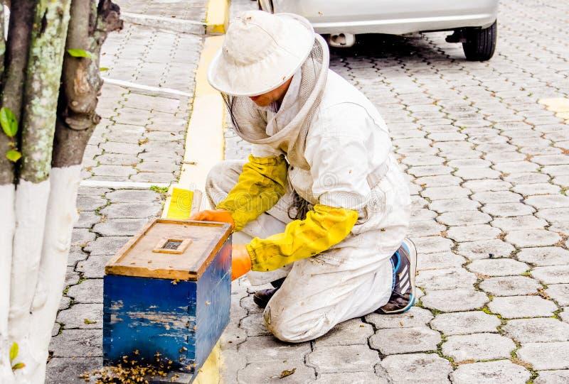 Υπαίθρια άποψη του μελισσοκόμου που συλλέγουν το μέλι και των μελισσών, φθορά μια πλήρης πλήρης προστασία ενάντια στο τσίμπημα με στοκ φωτογραφία με δικαίωμα ελεύθερης χρήσης