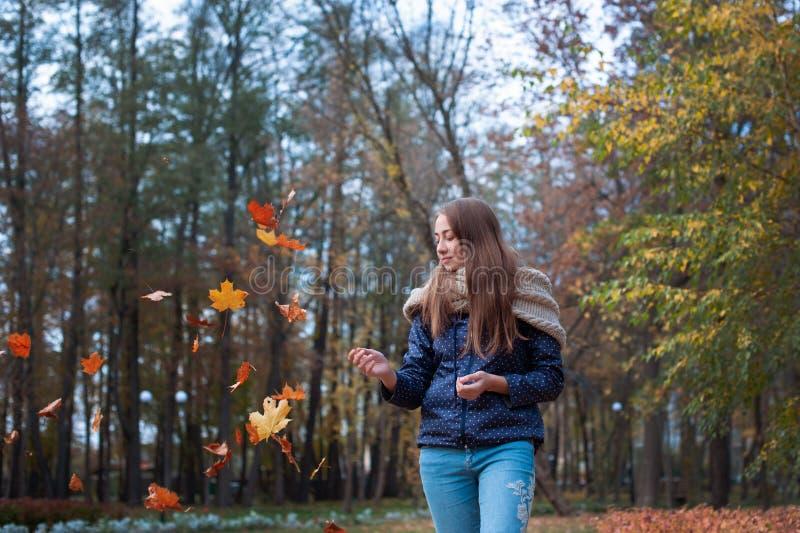 Υπαίθρια εικόνα μόδας τρόπου ζωής του ευτυχούς όμορφου κοριτσιού που ρίχνει τα φύλλα επάνω στον αέρα στο πάρκο φθινοπώρου στοκ φωτογραφία