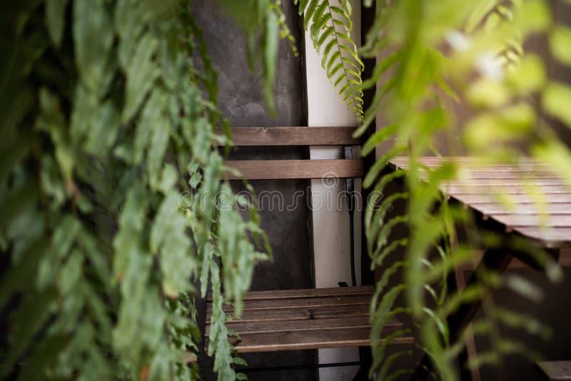 Υπαίθρια κενή έδρα που περιβάλλεται από τα πράσινα φύλλα φτερών στον κήπο ή το κατώφλι Τρόπος ζωής θερινής διαβίωσης στοκ φωτογραφίες με δικαίωμα ελεύθερης χρήσης