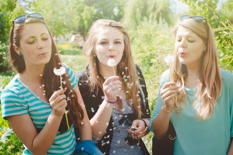 Υπαίθρια φωτογραφία των όμορφων γοητευτικών κοριτσιών μέσα στοκ φωτογραφία