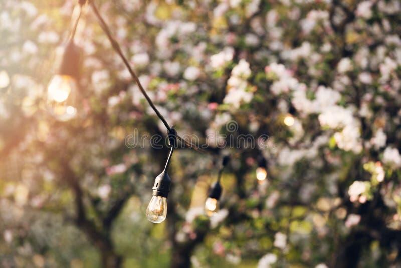 Υπαίθρια φω'τα σειράς κομμάτων που κρεμούν στον κήπο κατωφλιών στοκ φωτογραφίες