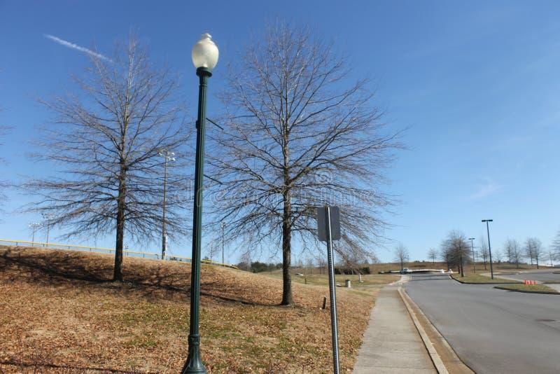 Υπαίθρια όμορφη ημέρα δασών και μπλε ουρανού στοκ εικόνα