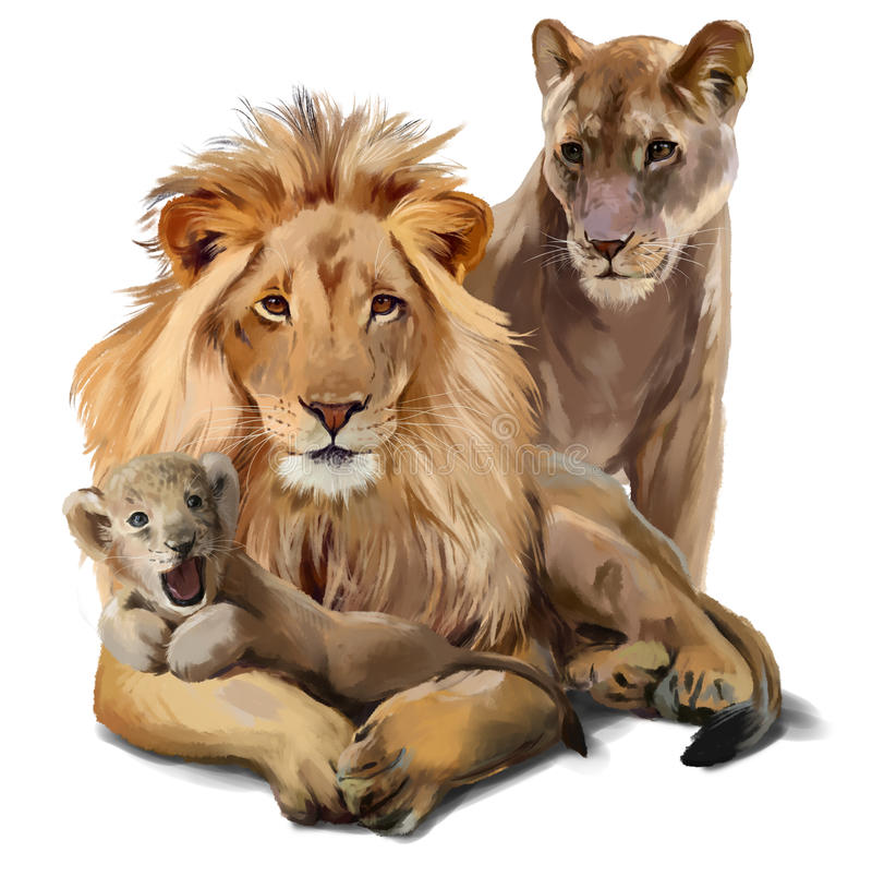 Υπερηφάνεια λιονταριών ελεύθερη απεικόνιση δικαιώματος