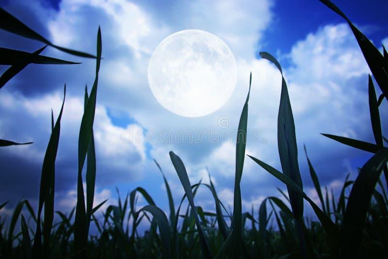 Υπερφυσική έννοια φαντασίας - πανσέληνος στο υπόβαθρο νυχτερινών ουρανών στοκ εικόνες