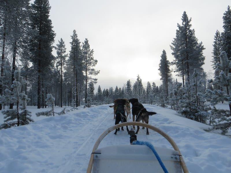 Υπερφυσικός γεροδεμένος γύρος στο χιόνι στοκ φωτογραφίες με δικαίωμα ελεύθερης χρήσης