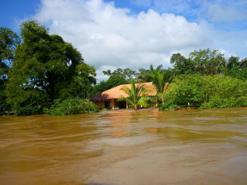 Υπερχείλιση σε Tortuguero, Κόστα Ρίκα στοκ εικόνες