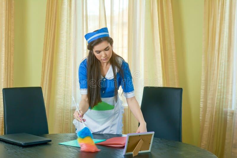 Υπηρέτρια με τη χνουδωτή βούρτσα σκόνης στοκ εικόνα με δικαίωμα ελεύθερης χρήσης