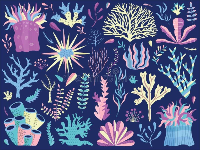 Υποβρύχια κοραλλιογενής ύφαλος με τα φύκια και Anemones διανυσματική απεικόνιση
