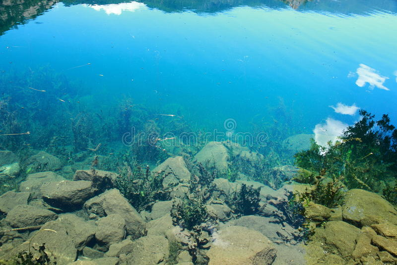 Υποβρύχια σκηνή σκοπέλων στη λίμνη Lugu, αντανάκλαση στο σαφές νερό στοκ εικόνα με δικαίωμα ελεύθερης χρήσης