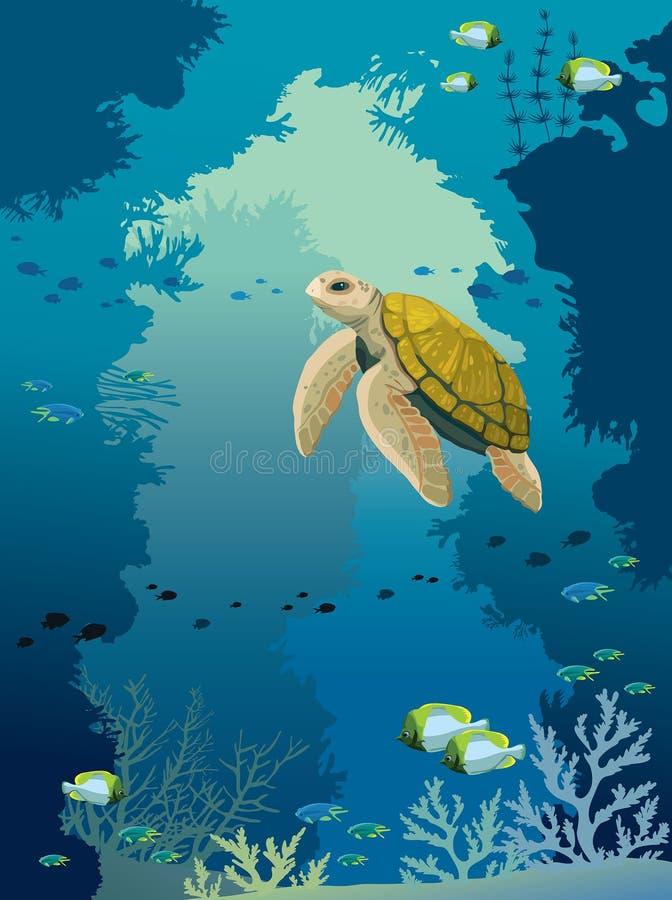 Υποβρύχια σπηλιά, χελώνα, κοραλλιογενής ύφαλος, ψάρια και θάλασσα απεικόνιση αποθεμάτων