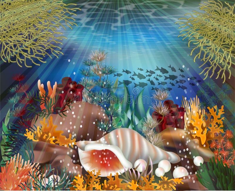 Υποβρύχια ταπετσαρία με το κοχύλι conch, διάνυσμα απεικόνιση αποθεμάτων