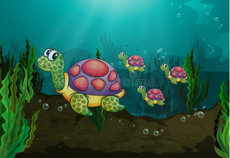Υποβρύχιες χελώνες απεικόνιση αποθεμάτων