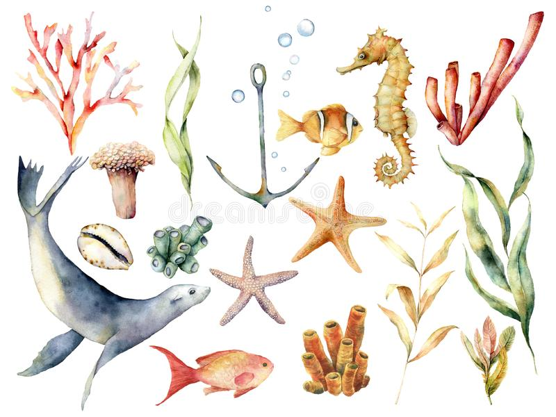Υποβρύχιο σύνολο άγριας φύσης Watercolor Το χέρι χρωμάτισε την κοραλλιογενή ύφαλο, το λιοντάρι θάλασσας, τα τροπικά ψάρια, την άγ ελεύθερη απεικόνιση δικαιώματος