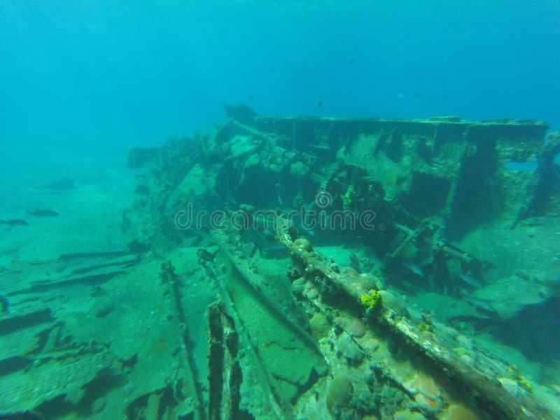 Υποβρύχιο τοπίο στην Κούβα στοκ εικόνες