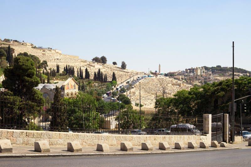 Υποστήριγμα των ελιών, Ιερουσαλήμ, Ισραήλ Η βασιλική της αγωνίας στοκ φωτογραφίες