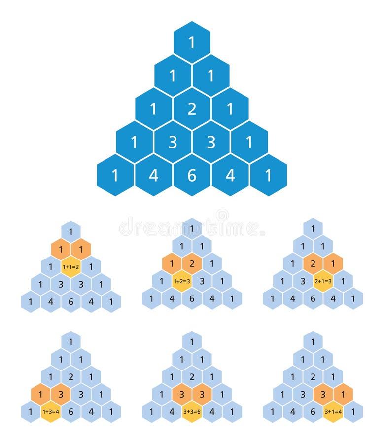 Υπολογισμός τριγώνων PASCAL, δυωνυμικοί συντελεστές, μαθηματικά διανυσματική απεικόνιση