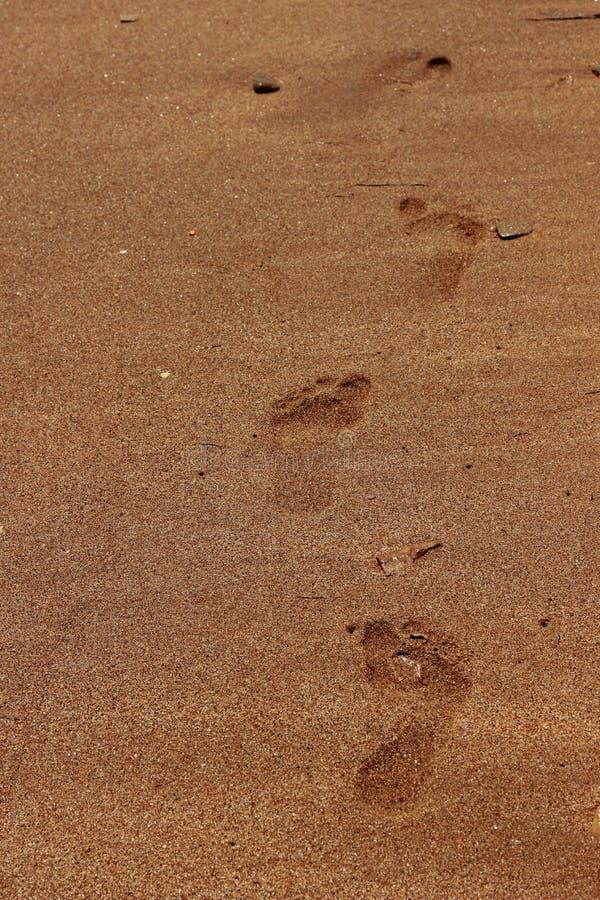 Υπόβαθρο άμμου θάλασσας στοκ φωτογραφία με δικαίωμα ελεύθερης χρήσης