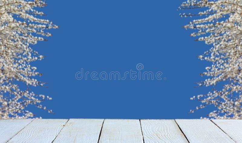 Υπόβαθρο άνοιξη με τα ανθίζοντας δέντρα, το μπλε ουρανό και τις άσπρες ξύλινες σανίδες στοκ φωτογραφία με δικαίωμα ελεύθερης χρήσης