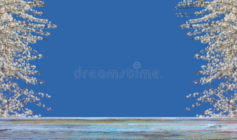 Υπόβαθρο άνοιξη με τα ανθίζοντας δέντρα, το μπλε ουρανό και τις μπλε ξύλινες σανίδες στοκ εικόνα