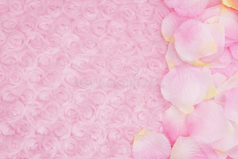 Υπόβαθρο άνοιξη με τα πέταλα λουλουδιών σε χλωμό - ρόδινος αυξήθηκε ύφασμα βελούδου στοκ εικόνα με δικαίωμα ελεύθερης χρήσης