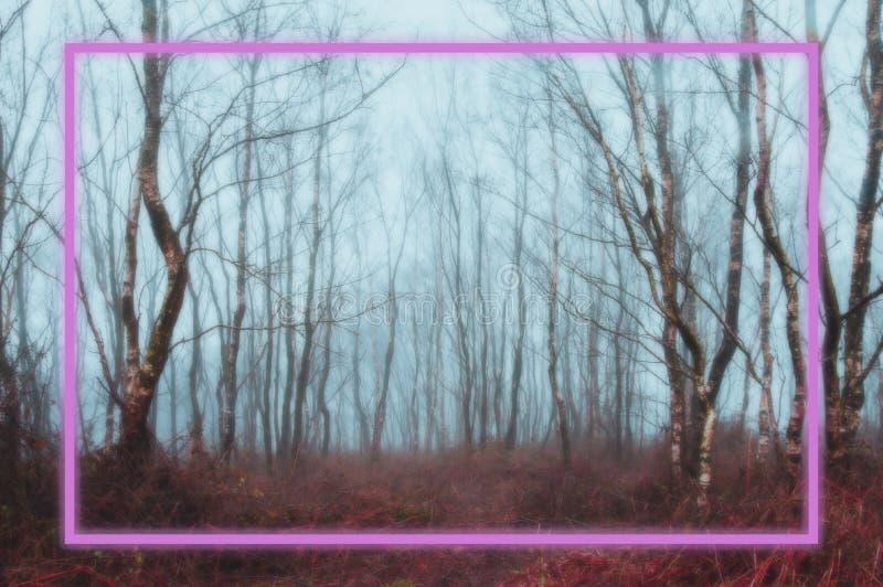 Υπόβαθρο Ένα καμμένος ρόδινο ορθογώνιο νέου που πλαισιώνεται πέρα από ένα απόκοσμο, misty χειμερινό δάσος με χρωματισμένος θολωμέ στοκ εικόνες με δικαίωμα ελεύθερης χρήσης
