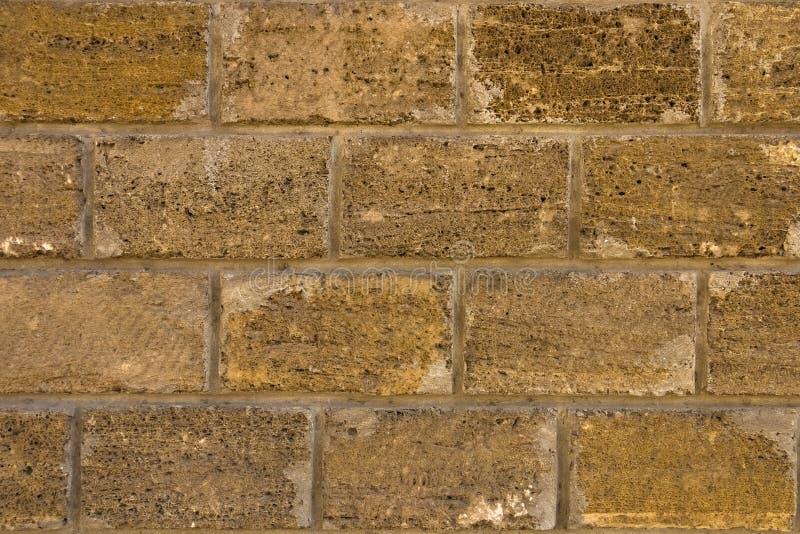 Υπόβαθρο, ασβεστόλιθος σύστασης τοίχων, βράχος κοχυλιών στοκ φωτογραφία με δικαίωμα ελεύθερης χρήσης