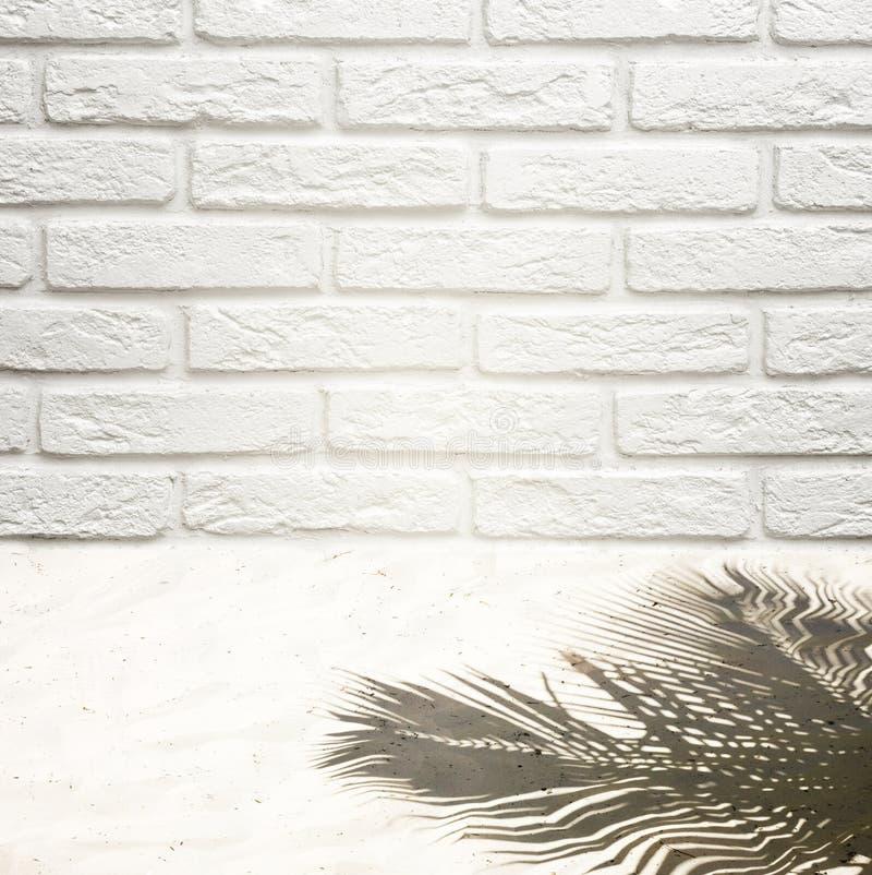 Υπόβαθρο για να παρεμβάλει ένα αντικείμενο σε έναν τουβλότοιχο και την άσπρη άμμο με μια σκιά από ένα δέντρο καρύδων στοκ εικόνες