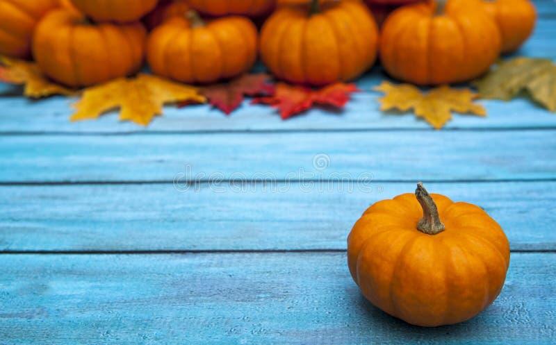 Υπόβαθρο ημέρας των ευχαριστιών κολοκύθας φθινοπώρου στοκ φωτογραφίες