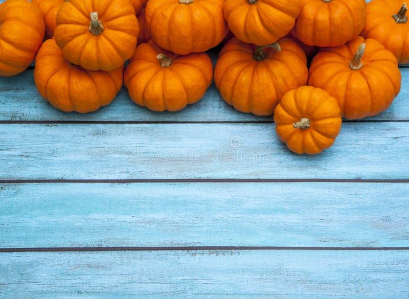 Υπόβαθρο ημέρας των ευχαριστιών κολοκύθας φθινοπώρου στοκ εικόνες με δικαίωμα ελεύθερης χρήσης