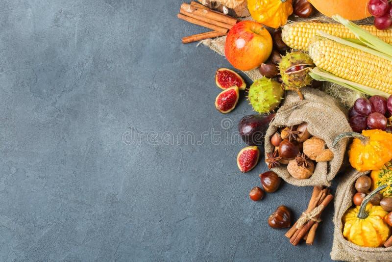 Υπόβαθρο ημέρας των ευχαριστιών συγκομιδών φθινοπώρου πτώσης με το καλαμπόκι κάστανων μήλων κολοκύθας στοκ φωτογραφία