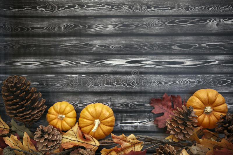 Υπόβαθρο ημέρας των ευχαριστιών φθινοπώρου στοκ εικόνα