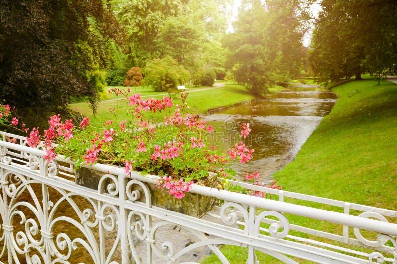 Υπόβαθρο θερινών πάρκων με τα λουλούδια στη γέφυρα στοκ φωτογραφίες με δικαίωμα ελεύθερης χρήσης