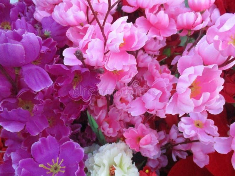 Υπόβαθρο και ταπετσαρία λουλουδιών στοκ εικόνα