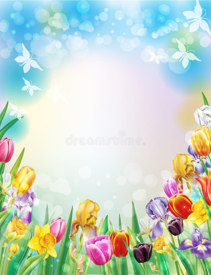 Υπόβαθρο με τα πολύχρωμα λουλούδια άνοιξη απεικόνιση αποθεμάτων