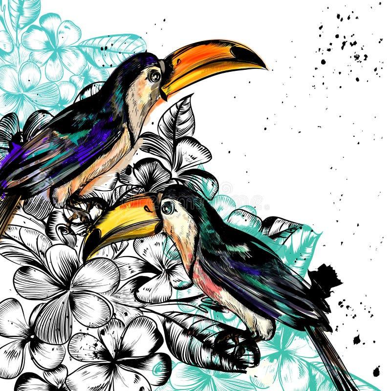 Υπόβαθρο με τα τροπικά λουλούδια και τα toucan πουλιά διανυσματική απεικόνιση