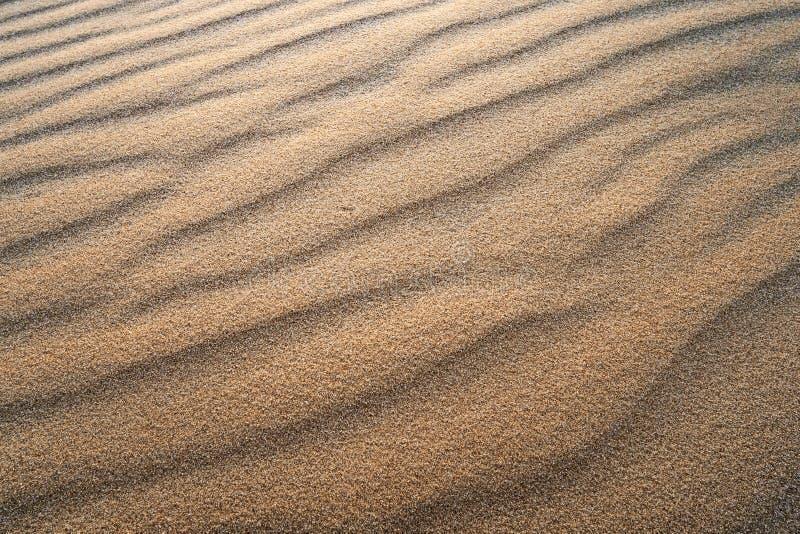 Υπόβαθρο με τις ομαλές γραμμές άμμου Κυματισμοί αμμόλοφων άμμου στην άμμο Λουρίδες στην άμμο από τον αέρα στοκ εικόνες