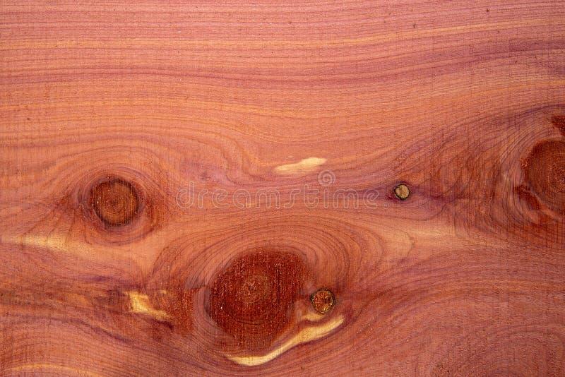 Υπόβαθρο ξυλείας κέδρων στοκ εικόνα με δικαίωμα ελεύθερης χρήσης