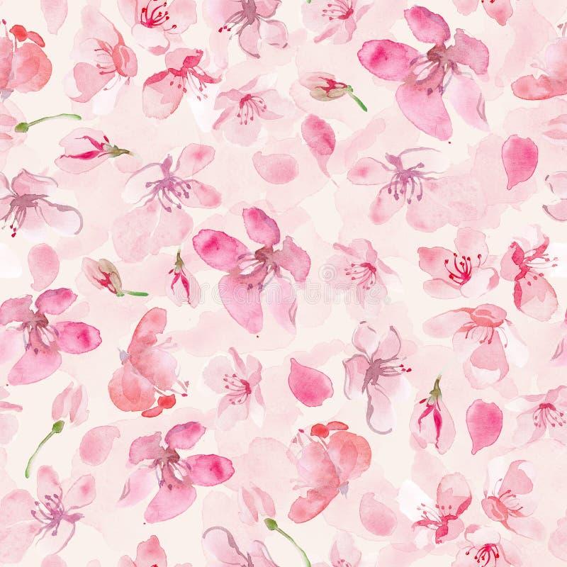 Υπόβαθρο λουλουδιών Sakura ελεύθερη απεικόνιση δικαιώματος