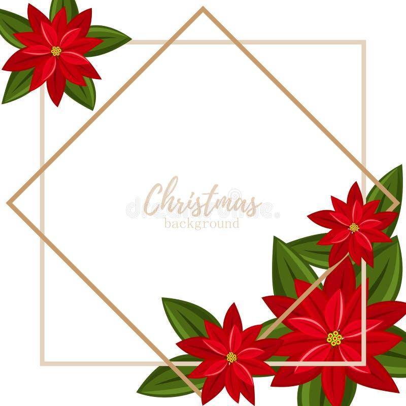 Υπόβαθρο περιόδου διακοπών Χριστουγέννων με το κόκκινο λουλούδι Χριστουγέννων Poinsettia στο άσπρο υπόβαθρο με το διαστημικό και  διανυσματική απεικόνιση