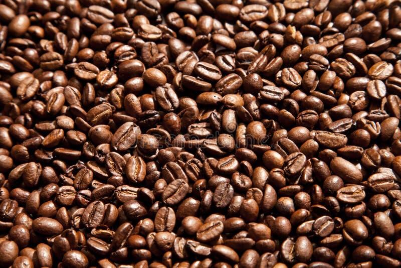Υπόβαθρο σιταριών καφέ στοκ εικόνες με δικαίωμα ελεύθερης χρήσης