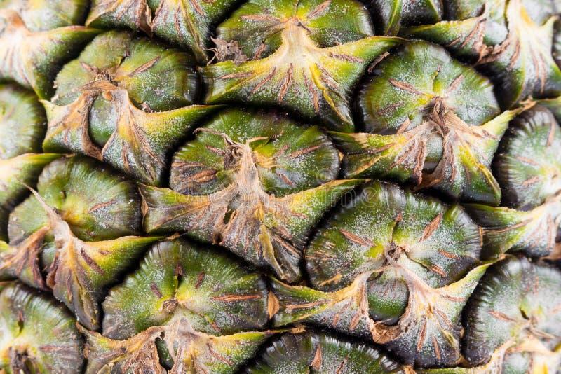 Υπόβαθρο σύστασης ενός ανανά στοκ εικόνα με δικαίωμα ελεύθερης χρήσης