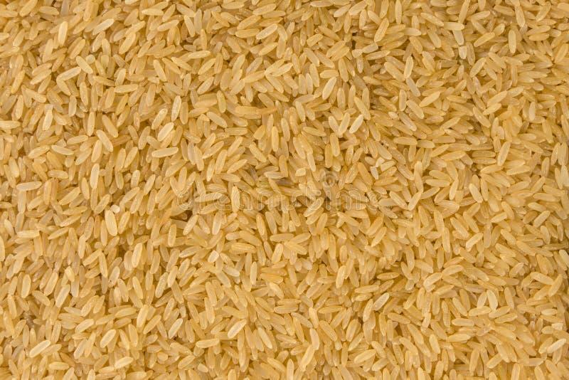 Υπόβαθρο σύστασης καφετιού ρυζιού διατροφή βιο φυσικό συστατικό τροφίμων στοκ εικόνες με δικαίωμα ελεύθερης χρήσης