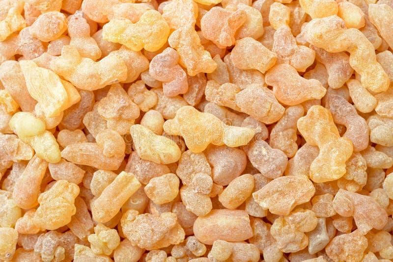 Υπόβαθρο της καθαρής frankincense ρητίνης, τοπ άποψη στοκ φωτογραφία
