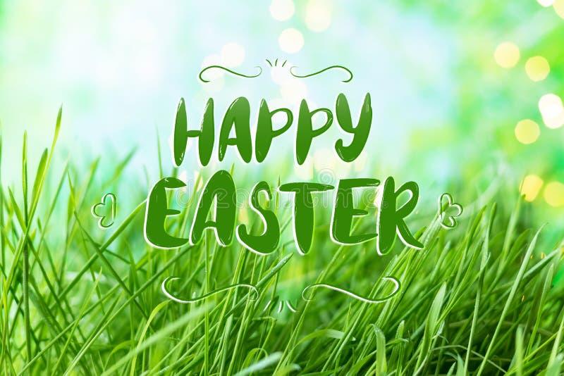 Υπόβαθρο της πράσινης θερινής χλόης με την ευτυχή επιγραφή εγγραφής Πάσχας, δροσιά και bokeh ελεύθερη απεικόνιση δικαιώματος
