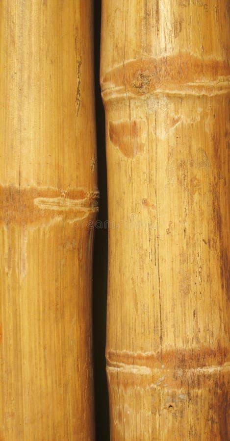 Υπόβαθρο τοίχων μπαμπού στοκ φωτογραφία